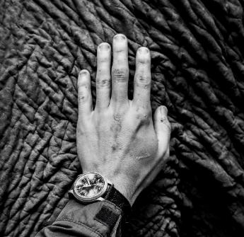 Ligamentos y músculos de la mano